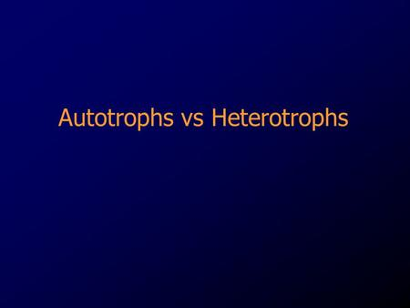 Autotrophs vs Heterotrophs. Autotrophs A groups of organisms that can use the energy in sunlight to convert water and carbon dioxide into Glucose (food)