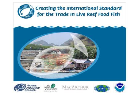 CREATING THE INTERNATIONAL STANDARD FOR THE TRADE IN LIVE REEF FOOD FISH.