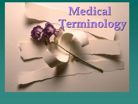 NURS 1103 or HLSC 2613 Medical Terminology 2 Learning Terminology.