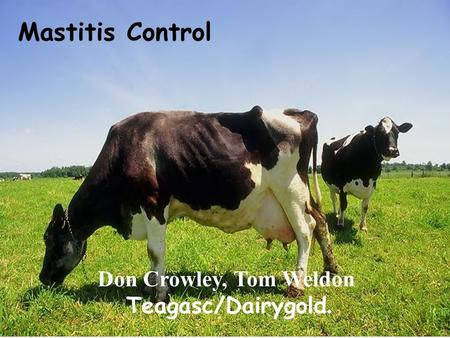 Mastitis Control Don Crowley, Tom Weldon Teagasc/Dairygold.