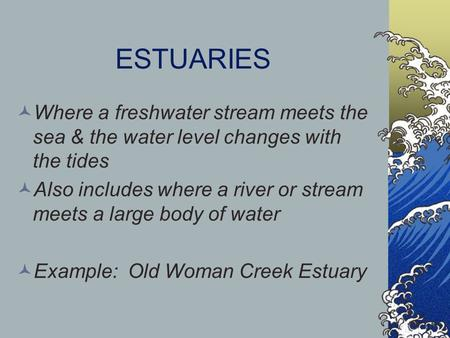 ESTUARIES Where a freshwater stream meets the sea & the water level changes with the tides Also includes where a river or stream meets a large body of.