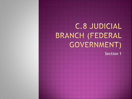 Section 1.  Federal courts, like the Supreme Court, make up the judicial branch of the U.S. government.  The United States Supreme Court is at the top.