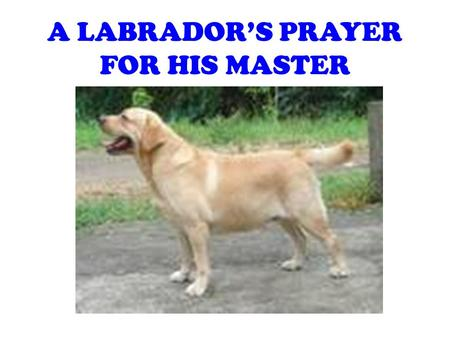 A LABRADOR'S PRAYER FOR HIS MASTER. O, Lord God Make my master faithful to his fellow men as I am to him. Grant that he may be devoted to his friends.