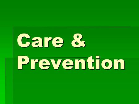 Care & Prevention. Objectives  List 3 professional organizations that contribute to the sports medicine profession  Describe the duties of an athletic.