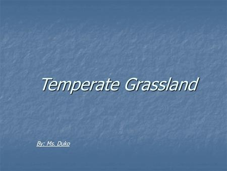 Temperate Grassland By: Ms. Duko. The Climate Temperate continental climates are found on continents in the Northern Hemisphere Temperate continental.