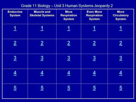Grade 11 Biology – Unit 3 Human Systems Jeopardy 2 Endocrine System Muscle and Skeletal Systems More Respiration System Even More Respiration System More.