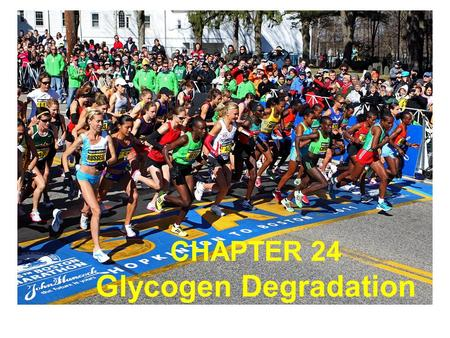 CHAPTER 24 Glycogen Degradation. Most glycogen is found in muscle and liver cells Glycogen particles in a liver cell section.