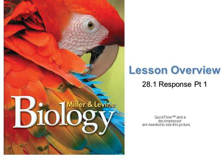 Lesson Overview Lesson OverviewResponse Lesson Overview 28.1 Response Pt 1.