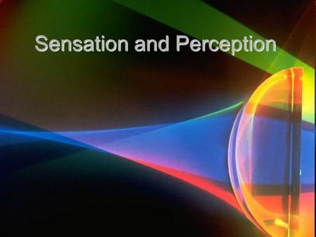 Sensation and Perception. What are Sensation and Perception? Sensation is the information we receive from our five senses (sight, taste, touch, smell,