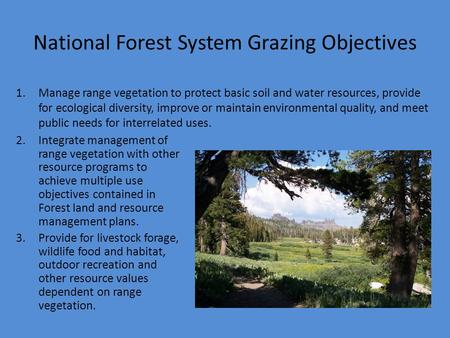 National Forest System Grazing Objectives 1.Manage range vegetation to protect basic soil and water resources, provide for ecological diversity, improve.