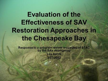 Evaluation of the Effectiveness of SAV Restoration Approaches in the Chesapeake Bay Response to a program review requested of STAC by the SAV Workgroup.