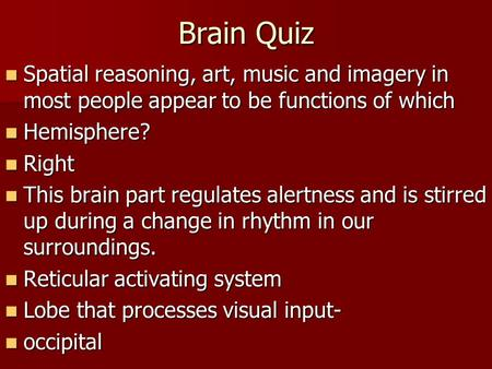 Brain Quiz Spatial reasoning, art, music and imagery in most people appear to be functions of which Spatial reasoning, art, music and imagery in most people.
