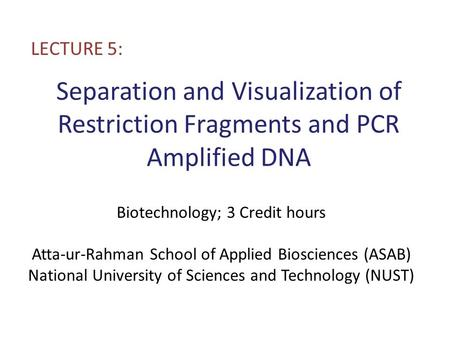 Separation and Visualization of Restriction Fragments and PCR Amplified DNA LECTURE 5: Biotechnology; 3 Credit hours Atta-ur-Rahman School of Applied Biosciences.