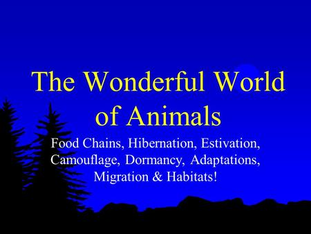 Food Chains, Hibernation, Estivation, Camouflage, Dormancy, Adaptations, Migration & Habitats! The Wonderful World of Animals.