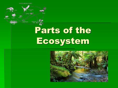 Parts of the Ecosystem. ECOSYSTEMS  An ECOSYSTEM must provide what an organism needs to survive, or the organism must move, adapt, or die.  To stay.