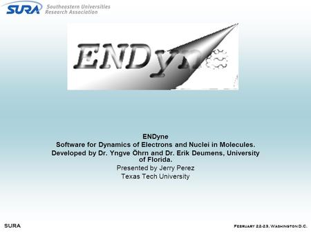 February 22-23, Washington D.C. SURA ENDyne Software for Dynamics of Electrons and Nuclei in Molecules. Developed by Dr. Yngve Öhrn and Dr. Erik Deumens,