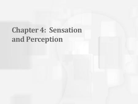 "Chapter 4: Sensation and Perception. Is it Sensation or Perception? ""In college, on a date at the Spaghetti Station, I returned from the bathroom and."