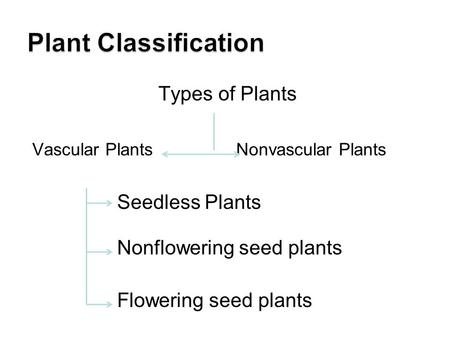 Types of Plants Vascular Plants Nonvascular Plants Seedless Plants Nonflowering seed plants Flowering seed plants.