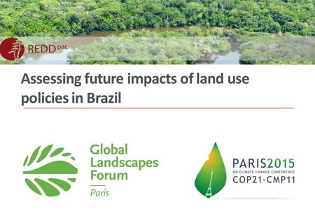 Assessing future impacts of land use policies in Brazil.