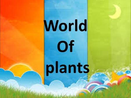 World Of plants. Essential questions: why plants are important?