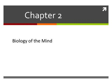  Chapter 2 Biology of the Mind Mind. Neural Communication  The body's information system is built from billions of interconnected cells called neurons.