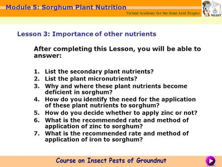 Virtual Academy for the Semi Arid Tropics Course on Insect Pests of Groundnut Module 5: Sorghum Plant Nutrition After completing this Lesson, you will.