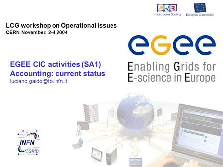 LCG workshop on Operational Issues CERN November, 2-4 2004 EGEE CIC activities (SA1) Accounting: current status