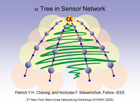  Tree in Sensor Network Patrick Y.H. Cheung, and Nicholas F. Maxemchuk, Fellow, IEEE 3 rd New York Metro Area Networking Workshop (NYMAN 2003)