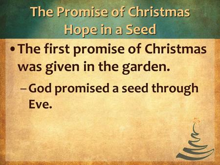 The Promise of Christmas Hope in a Seed The first promise of Christmas was given in the garden. –God promised a seed through Eve.