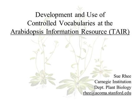 Development and Use of Controlled Vocabularies at the Arabidopsis Information Resource (TAIR) Sue Rhee Carnegie Institution Dept. Plant Biology
