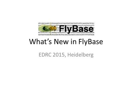 What's New in FlyBase EDRC 2015, Heidelberg. Visualising interaction networks.