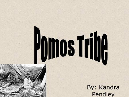 Pomos Tribe By: Kandra Pendley.