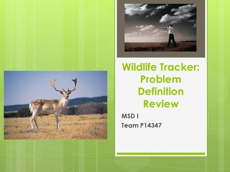 Wildlife Tracker: Problem Definition Review MSD I Team P14347.