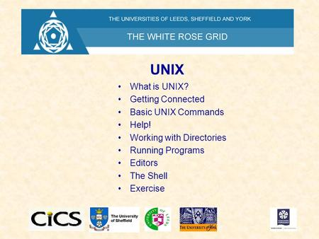UNIX What is UNIX? Getting Connected Basic UNIX Commands Help! Working with Directories Running Programs Editors The Shell Exercise.