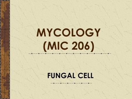 FUNGAL CELL MYCOLOGY (MIC 206). FUNGAL CELL A cell wall surrounds fungal cells (not present in human cells) and their slightly different metoblism provides.