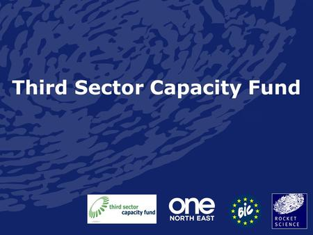 "Third Sector Capacity Fund. xkcd Purpose of the Fund ""The purpose of the Third Sector Capacity Fund is to build capacity to enable third sector organisations."