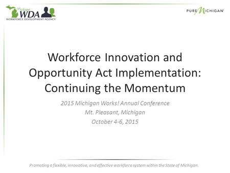 Promoting a flexible, innovative, and effective workforce system within the State of Michigan. Workforce Innovation and Opportunity Act Implementation: