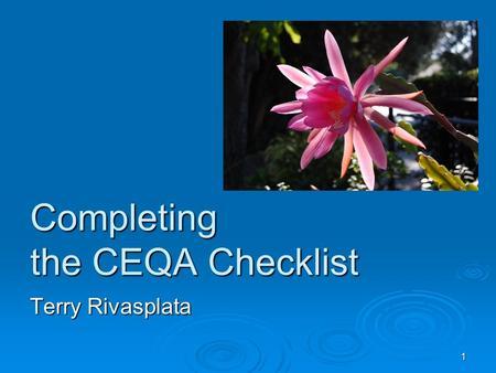 1 Completing the CEQA Checklist Terry Rivasplata.