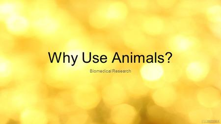 Why Use Animals? Biomedical Research.