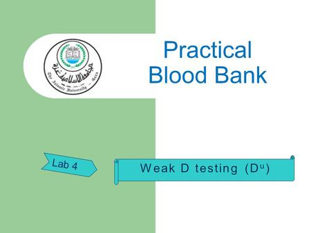 Lab 4 Practical Blood Bank. Weak expression of the R h D antigen (D u )  The term D U is widely used to describe cells which have  a quantitative reduction.