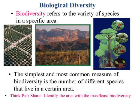 Section 5.1 Summary – pages 111-120 Biodiversity refers to the variety of species in a specific area. The simplest and most common measure of biodiversity.