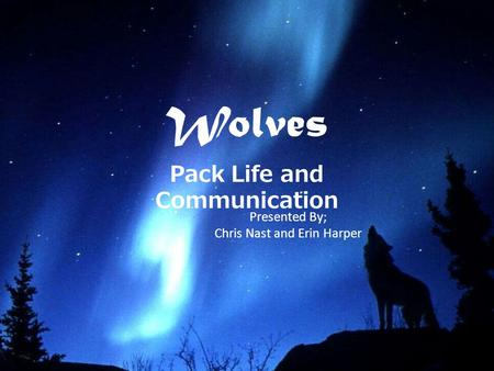 Wolves Pack Life and Communication Presented By; Chris Nast and Erin Harper.