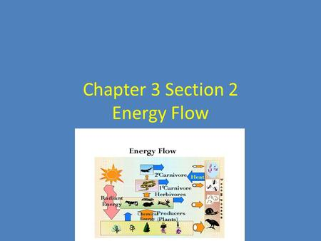 Chapter 3 Section 2 Energy Flow. Producers… Sunlight is the main energy source for life on Earth. – Less than 1% of the sun's energy that reaches Earth.