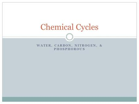 WATER, CARBON, NITROGEN, & PHOSPHOROUS Chemical Cycles.