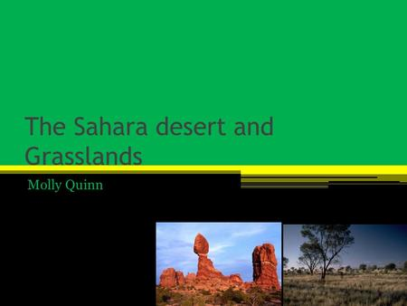 The Sahara desert and Grasslands Molly Quinn. The Sahara deserts major features It doesn't get very much rain It's dry most of the year It get less than.