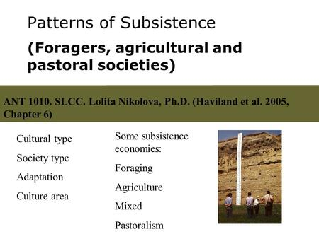 Patterns of Subsistence (Foragers, agricultural and pastoral societies) Cultural type Society type Adaptation Culture area Some subsistence economies: