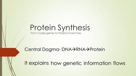 Protein Synthesis From Codes/genes to Proteins/machines Central Dogma- DNA  RNA  Protein It explains how genetic information flows.