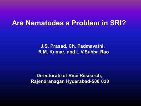 Are Nematodes a Problem in SRI?