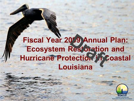 Fiscal Year 2009 Annual Plan: Ecosystem Restoration and Hurricane Protection in Coastal Louisiana Draft.