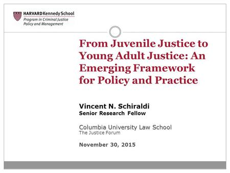 From Juvenile Justice to Young Adult Justice: An Emerging Framework for Policy and Practice Vincent N. Schiraldi Senior Research Fellow Columbia University.